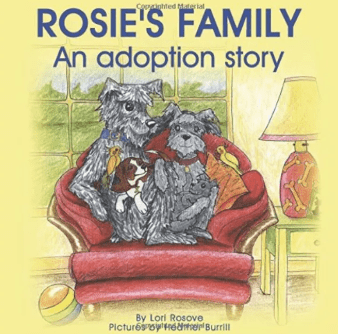 rosies family an adoption story