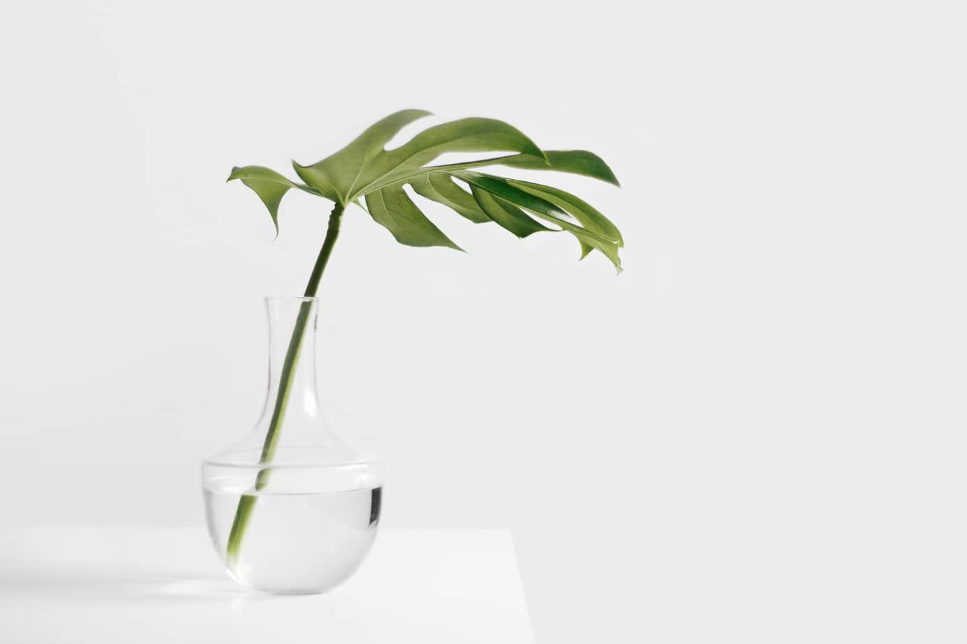 minimalist person