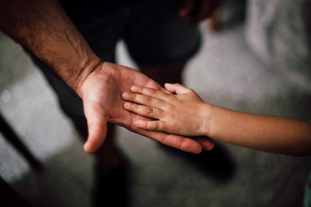 parenting the high needs child